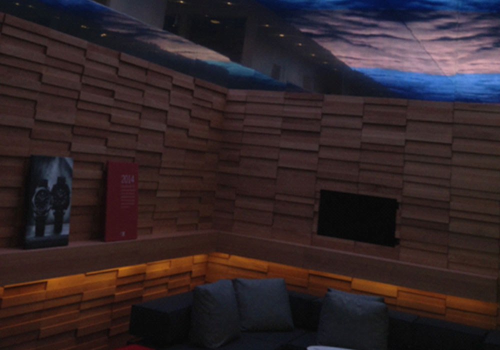 Indoor Ceiling Decorative Project In Switzerland