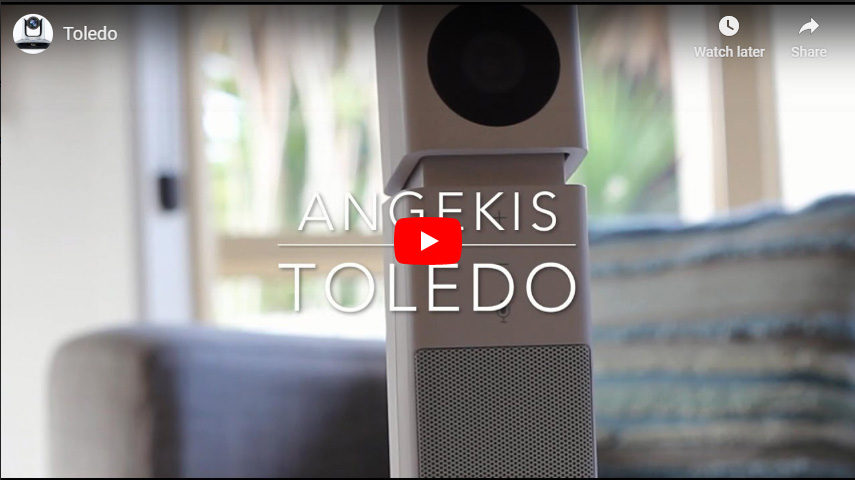 Toledo Video audio conference system