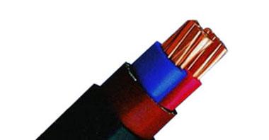 Câble isolé en PVC