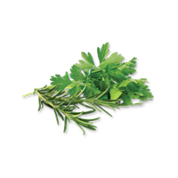 Real Herbs for Pet Food & Treats