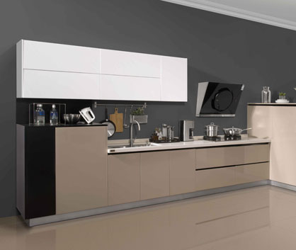URBAN SILHOUETTE Kitchen Cabinets