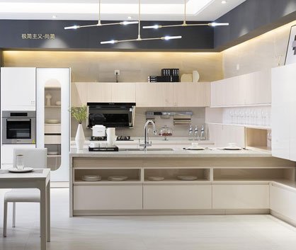 CONCISENESS Kitchen Cabinets